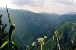 vidikovac-tmorska-glavica-podgora-rijeka-tara