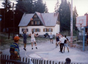 basket2-300x217