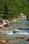 Rijeka tara - ribolov